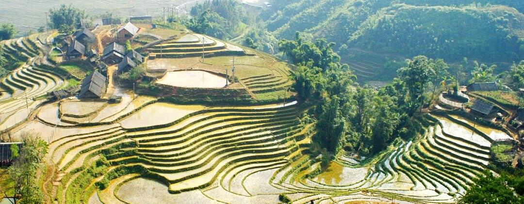 Rijstterrassen - Sapa, Vietnam